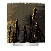 Cattails At Sunset Shower Curtain