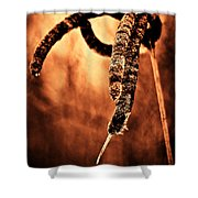 Cattails On Fire Shower Curtain