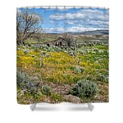 Cattle Camp Shower Curtain
