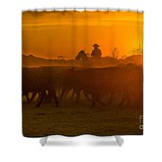 Cattle Drive 20 Shower Curtain