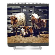 Cattle Shower Curtain
