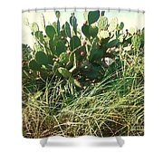 Catus 1 Shower Curtain