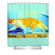 The Noble Art Of Catwalking  Shower Curtain by Hilde Widerberg