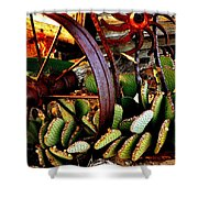 Caught In A Cactus Patch-sold Shower Curtain