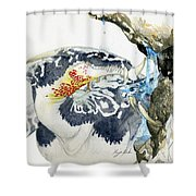 Cave Dragon Shower Curtain