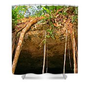 Cave Opening Shower Curtain