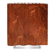 Cave Paintings By Bushmen, Damaraland Shower Curtain