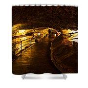Cavern Path 2 Shower Curtain