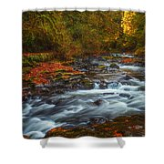 Cedar Creek Morning Shower Curtain