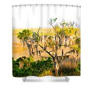 Cedar In The Marsh Shower Curtain