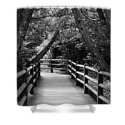 Cedar Pathway Shower Curtain