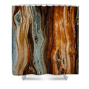 Cedar Texture Shower Curtain