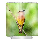 Cedar Waxwing Watercolor Art  Shower Curtain