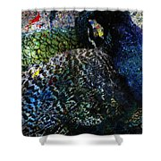 Celebration Of The Peacock #2 Shower Curtain