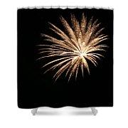 Celebration Xlii Shower Curtain