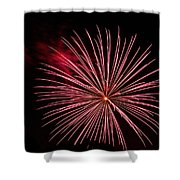 Celebration Xvii Shower Curtain by Pablo Rosales