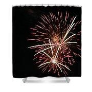 Celebration Xxi Shower Curtain