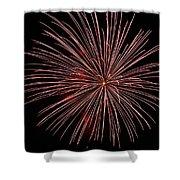 Celebration Xxii Shower Curtain