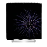 Celebration Xxix Shower Curtain