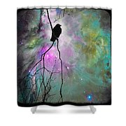 Celestial Dream Of Crow Shower Curtain