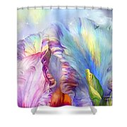 Celestial Goddesses Shower Curtain