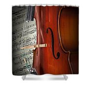 Cello Bridge And Beethoven Shower Curtain
