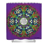 Celtic Spring Fairy Mandala Shower Curtain