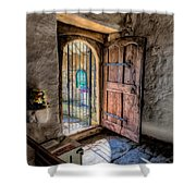 Celynnin Entrance Shower Curtain
