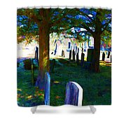 Cemetery Color 2 Shower Curtain