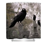 Cemetery Crows Shower Curtain