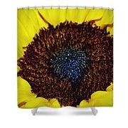 Center Of A Sunflower Shower Curtain