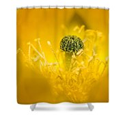 Center Of A Yellow Cactus Flower Shower Curtain