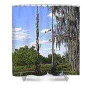 Central Florida Wetlands Shower Curtain