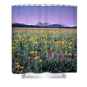 Central Idaho Color Shower Curtain
