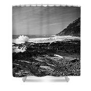Central Oregon Coast Bw Shower Curtain