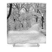 Central Park Dressed Up In White Shower Curtain