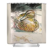Central Park Duck On The Rocks Shower Curtain