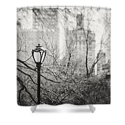 Central Park Lamppost In New York City Shower Curtain