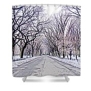 Central Park Mall In Winter Shower Curtain