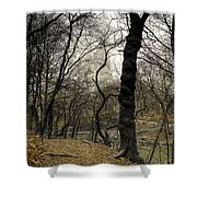 Central Park Rainy Day Number Three Shower Curtain