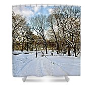 Central Park Snow Storm One Day Later2 Shower Curtain