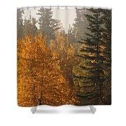 Central Park Yukon Shower Curtain