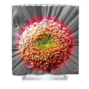 Centre Of Beauty Shower Curtain