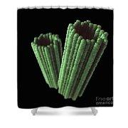Centrioles Shower Curtain