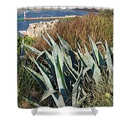 Century Plant 1 Shower Curtain