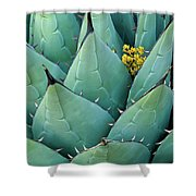 Century Plant And Tiny Blossom Shower Curtain