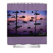 Century Sunset Shower Curtain