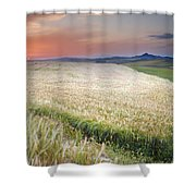 Cereal Fields Shower Curtain