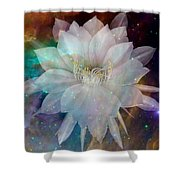 Cereus Chaos Shower Curtain by Tanya Hamell