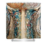 Cervical Spinal Cord, Posterior View Shower Curtain